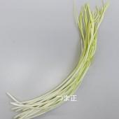 にんにく幸菜(kg)
